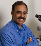 Nagesh Rao, PhD, Chief of Cytogenetics Services at UCLA Dept of Pathology & Laboratory Medicine.